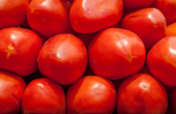 This is a picture of red ripe roma paste tomatoes that you can use in this homemade salsa recipe.
