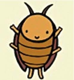 Roach Phobia