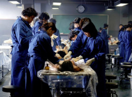 Students opening up a cadaver
