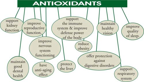 Antioxidants are Great!
