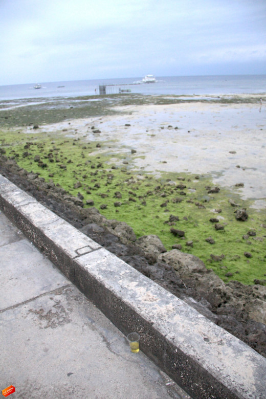 Along the Tulay walls decorates the marvelous green sea weeds and fishermen at a distant.