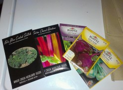 How To Grow Spring Vegetables From Seed