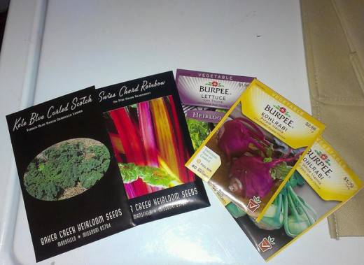 Going through my seed stash and determining what will be planted