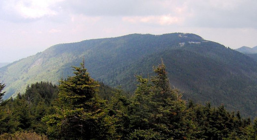 Mount Mitchell, 6,684 ft , in North Carolina is the highest peak east of the Mississippi River.