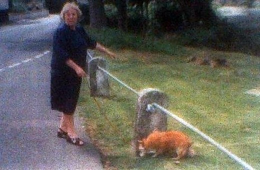 My mum in her younger days, pictured walking my dog Susie, was used to my bringing home an assortment of animal waifs and strays.