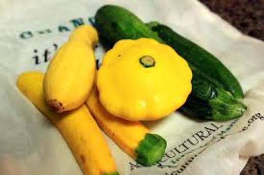 Several kinds of summer squash can be grown throughout the summer season.