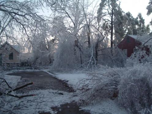IceStorm 2009