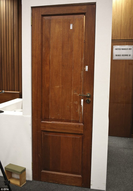 Oscar Pistorius toilet door recosntructed from crime scene for court