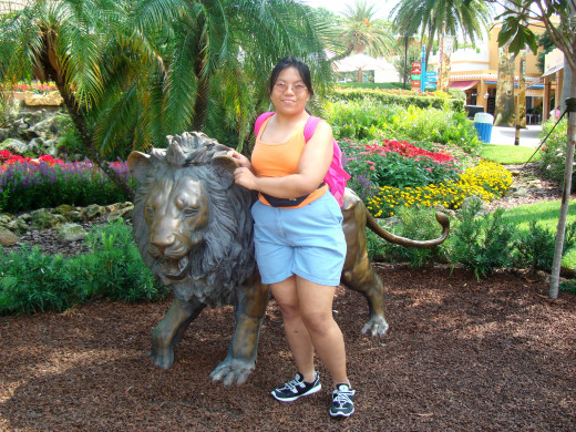 Though I know Tampa is more than this, I can't sincerly forget about our Busch Gardens. It's another staycation destination almost every Bay Area resident knows by heart.