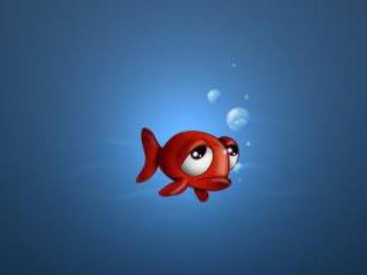 Avoid Stress on Fish