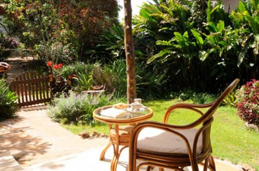 The garden at Miti Mingi guest house