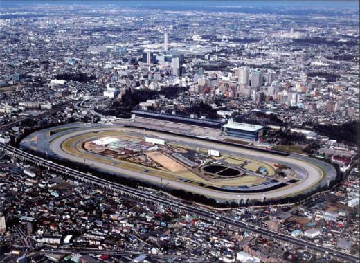 Tokyo Racecourse.