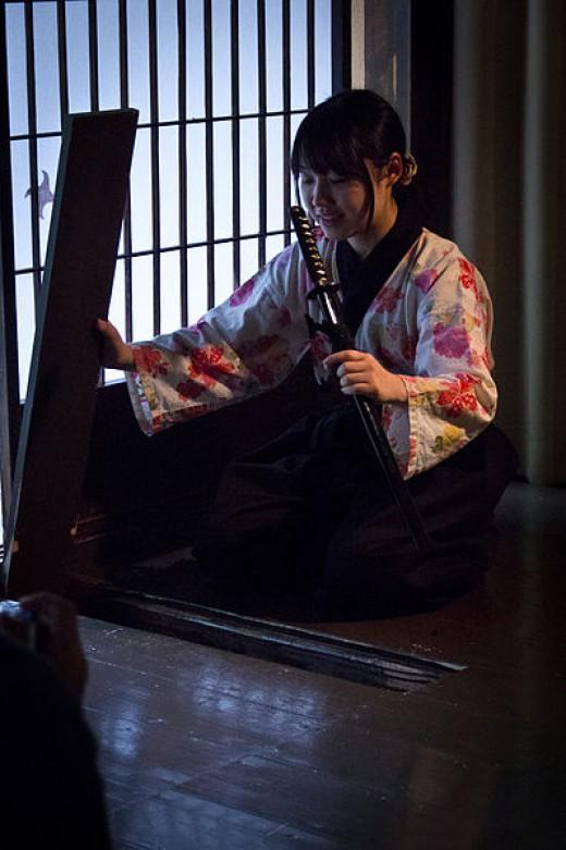 [[File:Ninja Museum.jpg|Ninja Museum]]