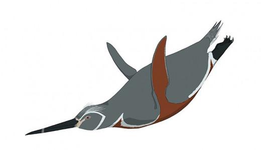 Inkayacu, as depicted by Katie Browne, 2010.