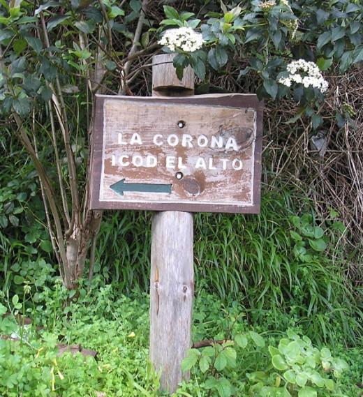 Pathway to La Corona