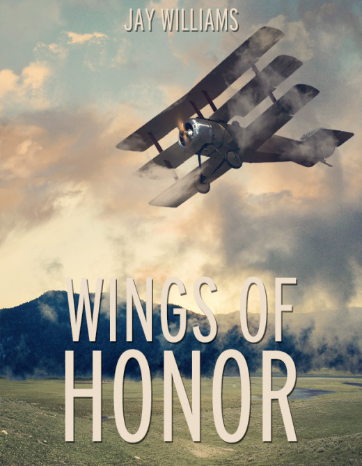 The author's eBook about a killer who is stalking the skies of North Carolina and shooting down unarmed small airplanes