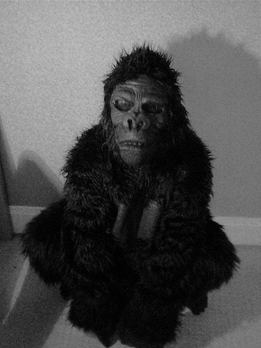 monkey suit 3 from Rubes#!/? flickr.com