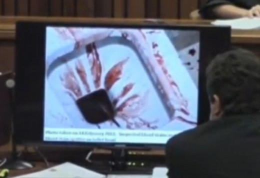 The toilet from the crime scene at Oscar Pistorius home