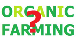 Does it make some sense to promote organic farming?