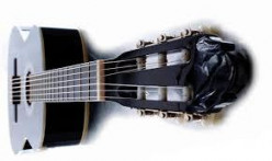 Choosing beginners acoustic guitar, buy new acoustic guitar
