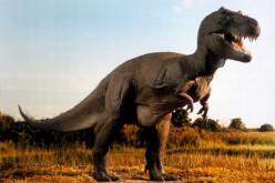 Most Popular Prehistoric Dinosaurs