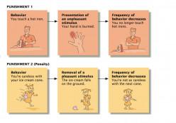 Understanding the Concept of Instrumental Conditioning