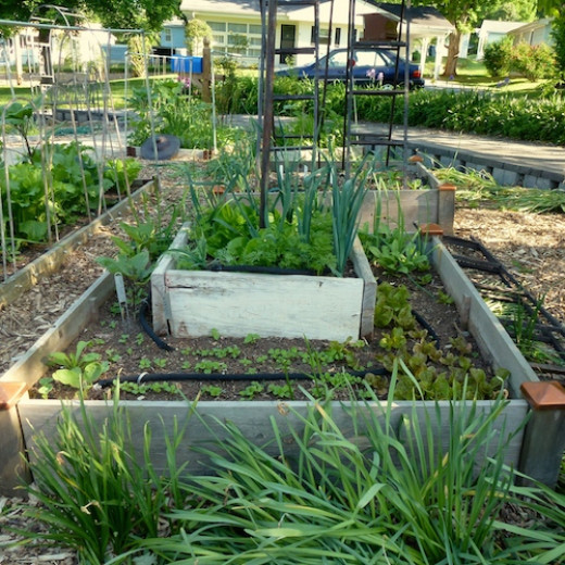 Get a jump on the garden season and stretch it for a couple more weeks with raised beds.