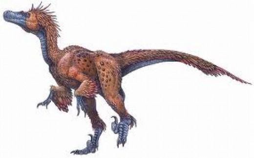 Deinonychus with its frightening clawed feet.