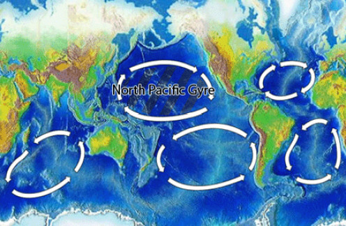 North Pacific and Other Gyres