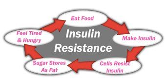 The Insulin Resistance Cycle is viscous