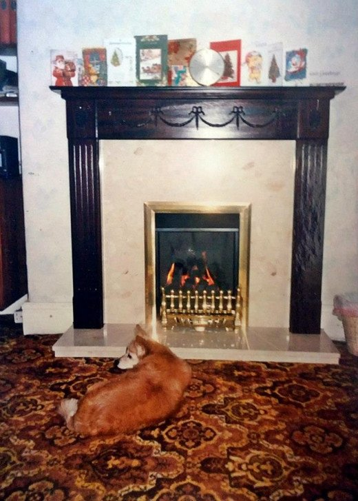 The new gas fire which my brother bought for our parents' dining room. (My dog Susie certainly liked it!)