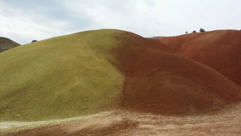 Gold and Brown at the Painted Hills in Oregon