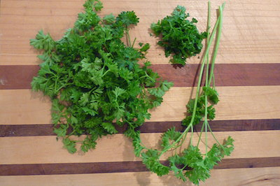 Season a dish with herbs and garnish with a spring of fresh herbs.