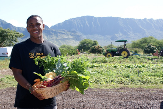 Leeward Community College students can get a tuition waiver and monthly stipend while working at Maʻo Farms, a certified organic farm in Waiʻanae. They get Associates of Arts degrees and certificates in Community Food Security.