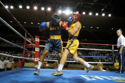 Stopping a heavyweight boxing match and daring the boxers to fight me