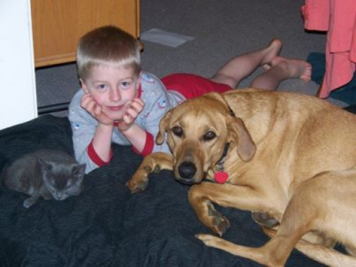 Seth, Hunter, and Cuddles [2007]