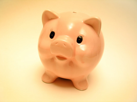 Pink Piggy - Small Business Loans