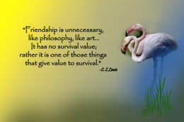 friendship gives value to survival