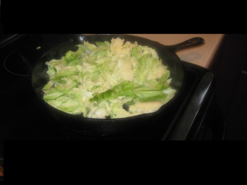 Cook Cabbage