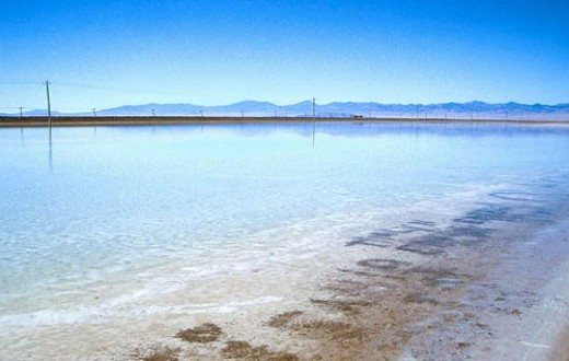 Salt and other minerals are evaporated out of the water. Algae and crustaceans live in the waters of the lake.