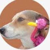 bryeunade profile image