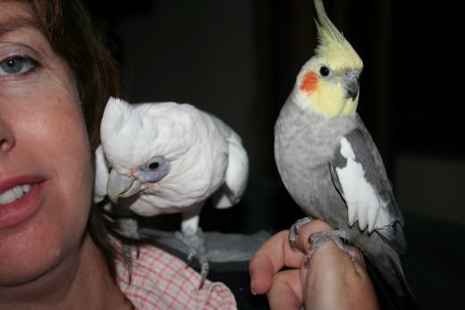 Casper and Skyla