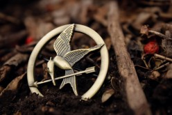 Hunger Games & Catching Fire: What the Movies Leave Out or Fail to Adequately Explain
