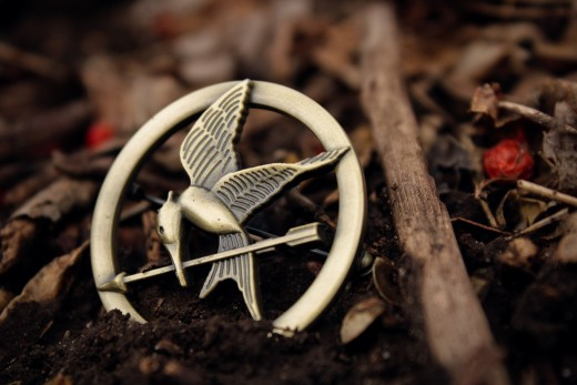 Katniss' pin, the mockingjay