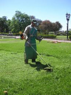 Tips For Running a Lawn Care Business
