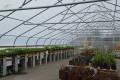 Urban Farming for Self-Sufficiency