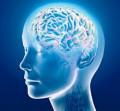 Accessing Alpha Mind Power Through Alpha Meditation