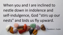 Quotations About Self-Indulgence
