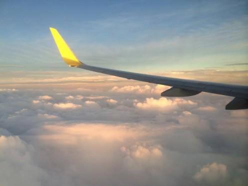 Life as a Flight Attendant~