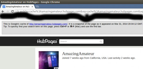 cache:www.amazingamateur.hubpages.com/ results in my homepage.